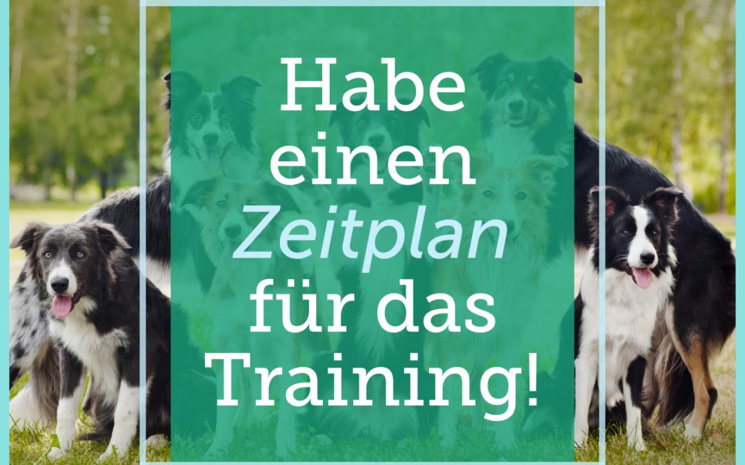 Hundetraining-Tipp 010: Habe einen Zeitplan für das Training!
